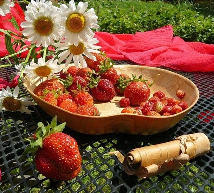 фото ягода клубника земляника