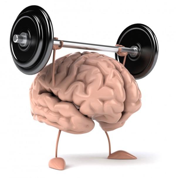 мозг требует тренировки